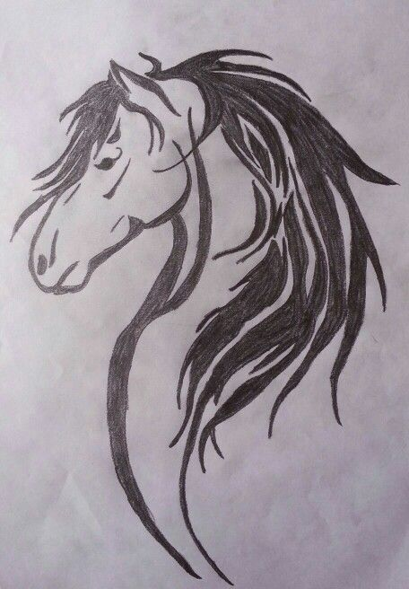 456x656 Collection Of A Horse Head Tattoo