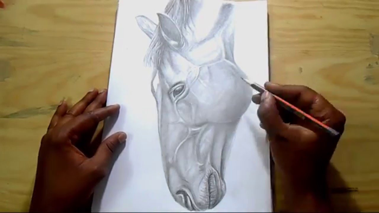 1280x720 How To Draw Horse How To Draw Horse Head How To Draw Horses