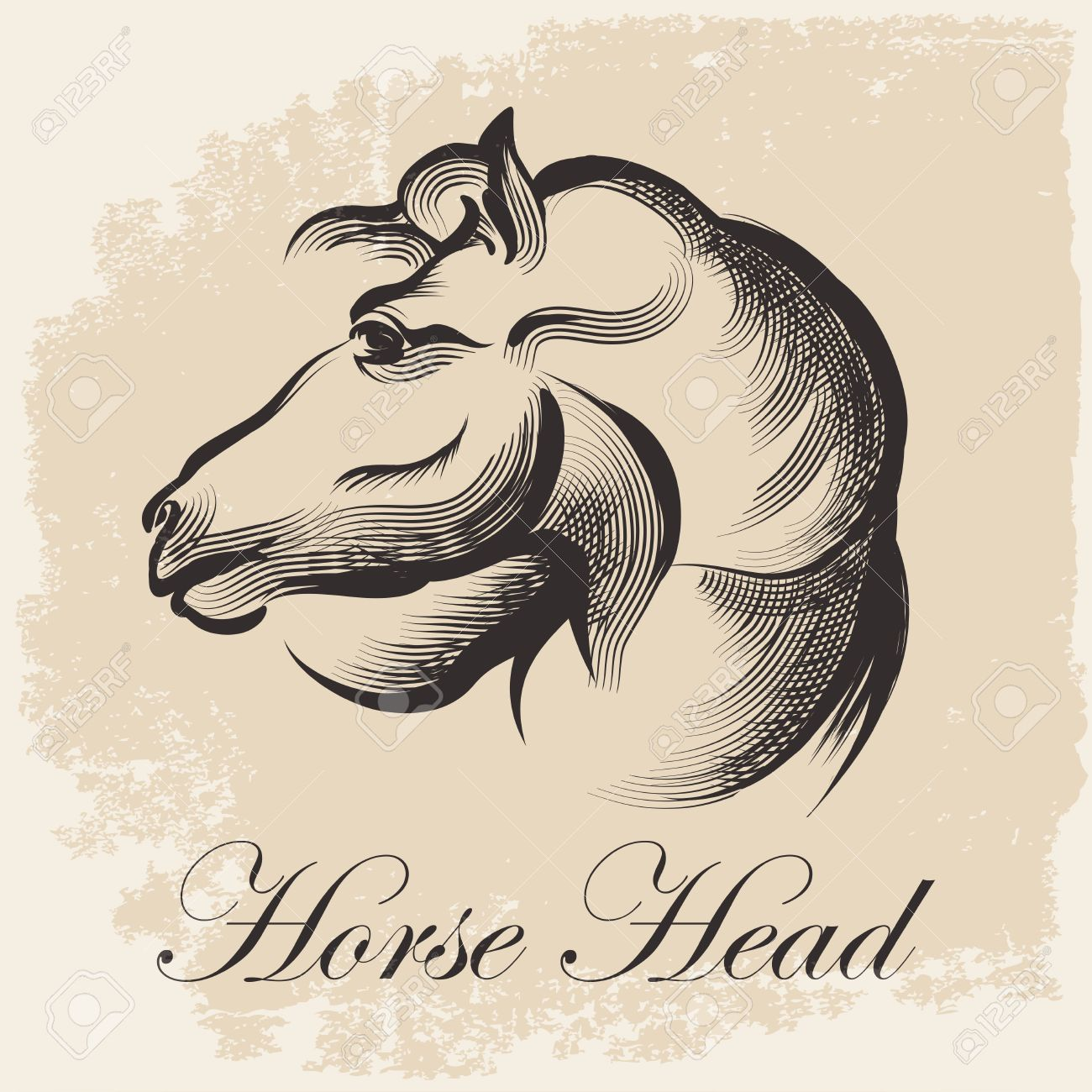 1300x1300 Sketch Of Horse Head Drawing In Retro Ink Style Royalty Free