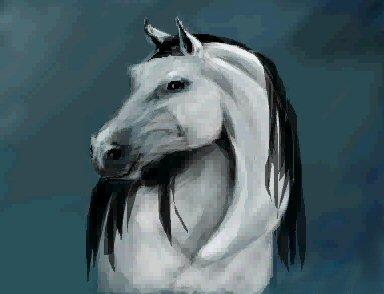 384x294 Animal Drawing Tutorial