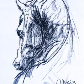 268x268 Charcoal Drawing Chakib Benkara Official Site