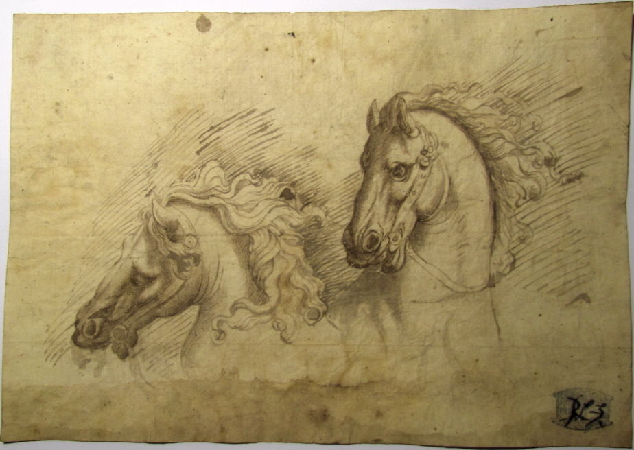 924x656 Magnificent Horse Heads Study Italian 17c, Old Master Ink Drawing