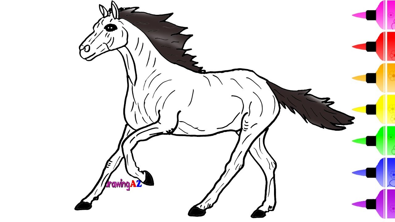 1280x720 Horse Drawing And Coloring For Kids Learning Colors And Zebra