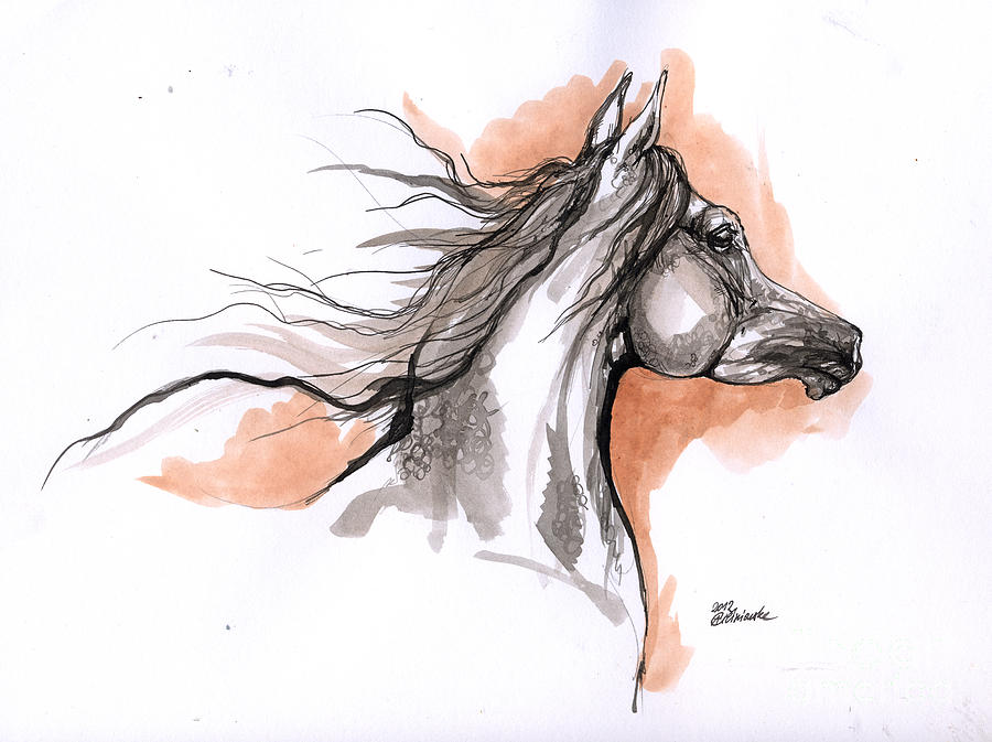 900x673 Arabian Horse Ink Drawing 3 Drawing By Angel Ciesniarska