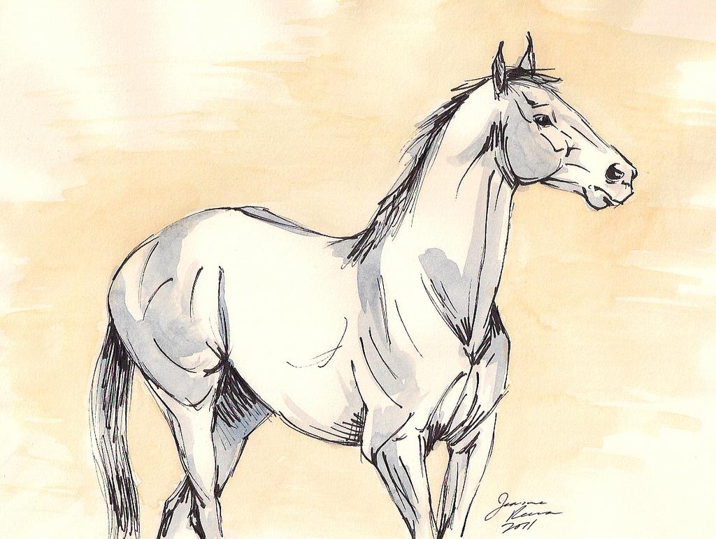 1024x772 Blue Horse Art Original Ink And Watercolor Sketch