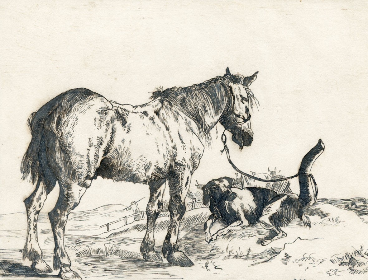 1181x900 Fine 19th Century Pen And Ink Drawing
