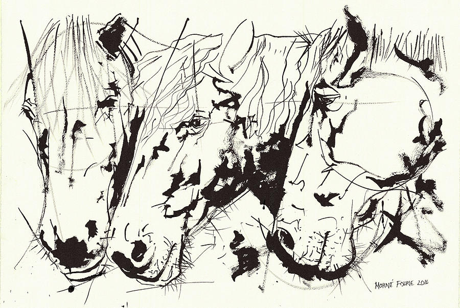 900x602 Three Horse Heads Ink Drawing Painting By Morne Fourie