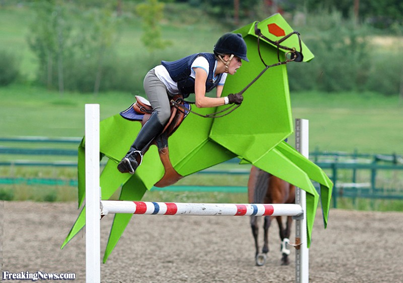 800x563 Origami Horse Jumping Pictures