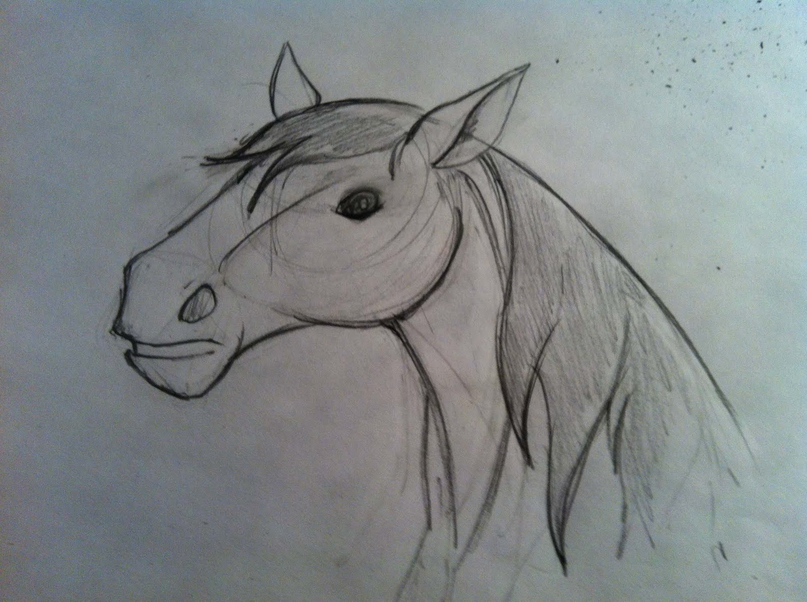 1600x1195 A Million Bad Drawings Another Horse Attempt! Bad Drawing