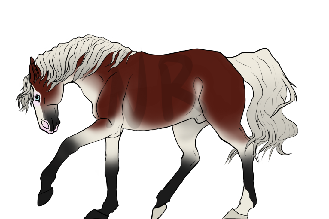 1095x730 First Drawing My New Tablet Horse Oc By The November Rain