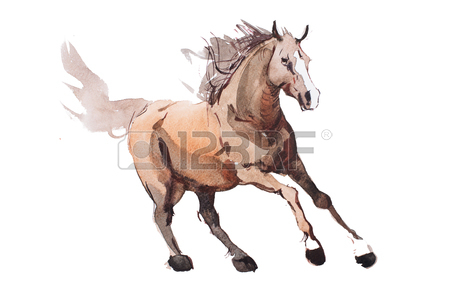 450x300 Horse Drawn Stock Photos. Royalty Free Business Images