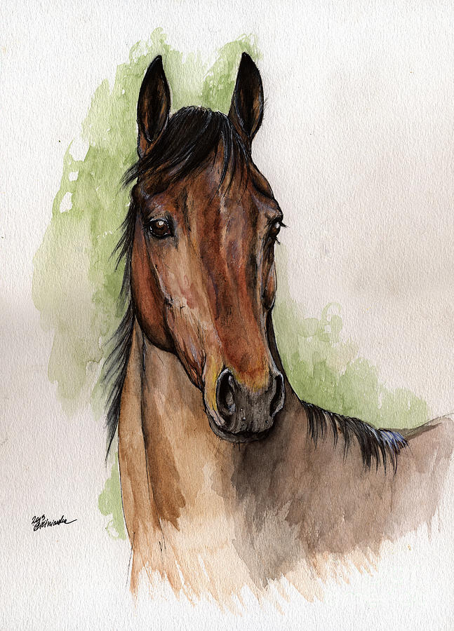 647x900 Bay Horse Portrait Watercolor Painting 02 2013 Painting By Angel