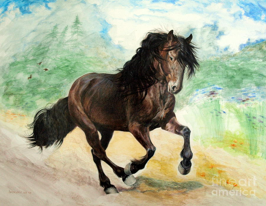 900x697 Portrait Of Phantom Canadian Horse Drawing By Jill Iversen