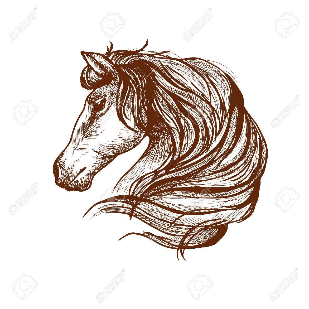 1300x1300 Graceful Horse Engraving Sketch Icon With Profile Of Purebred