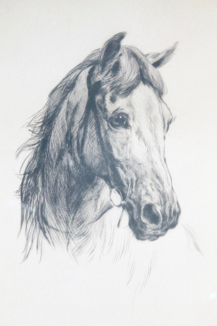 719x1080 Heywood Hardy (1842 1933). Horses Head Profile