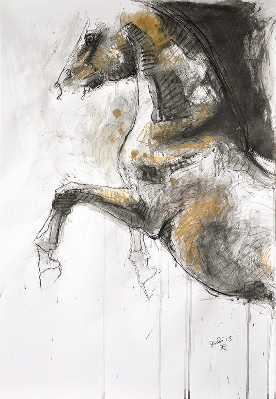 570x822 Rearing Up Horse Original Charcoal Drawing Of A Horse
