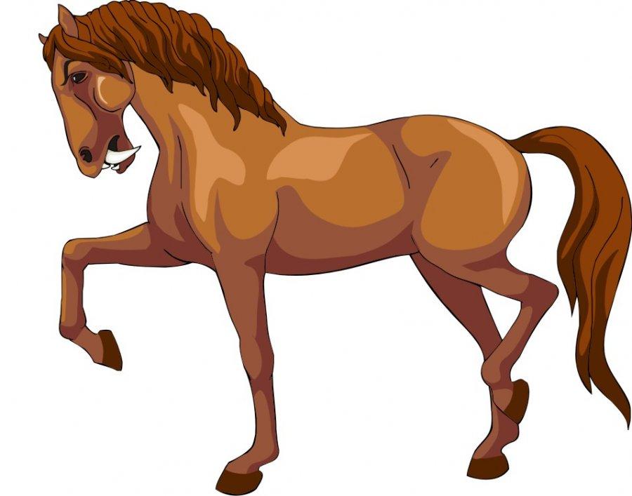 horse vector drawing at getdrawings com free for personal use rh getdrawings com horse vector art horse vector art free