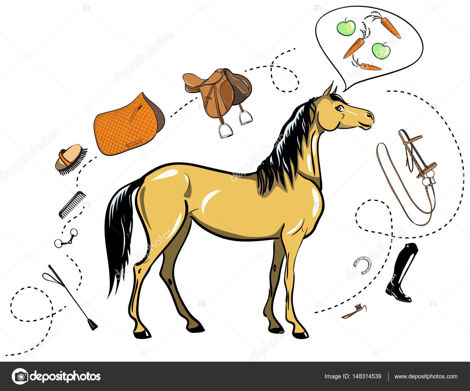 1600x1333 Horse And Horseback Riding Tack. Bridle, Saddle, Stirrup, Brush