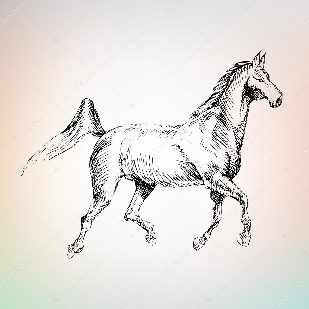 1024x1024 Arabian Horse Riding, Drawn Stock Vector Lemyppp