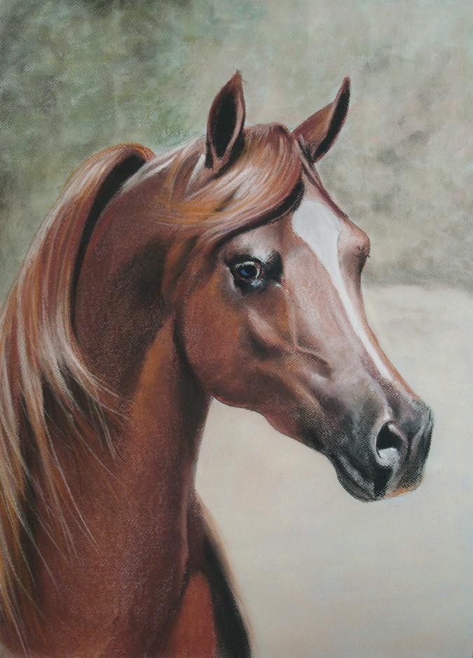 675x940 Pin By Ilaria Dotti On Horses In Art Without Riding Tack (Partial