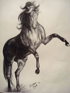 236x314 Drawings Of Horses Running Horses Running Drawing Running Horse