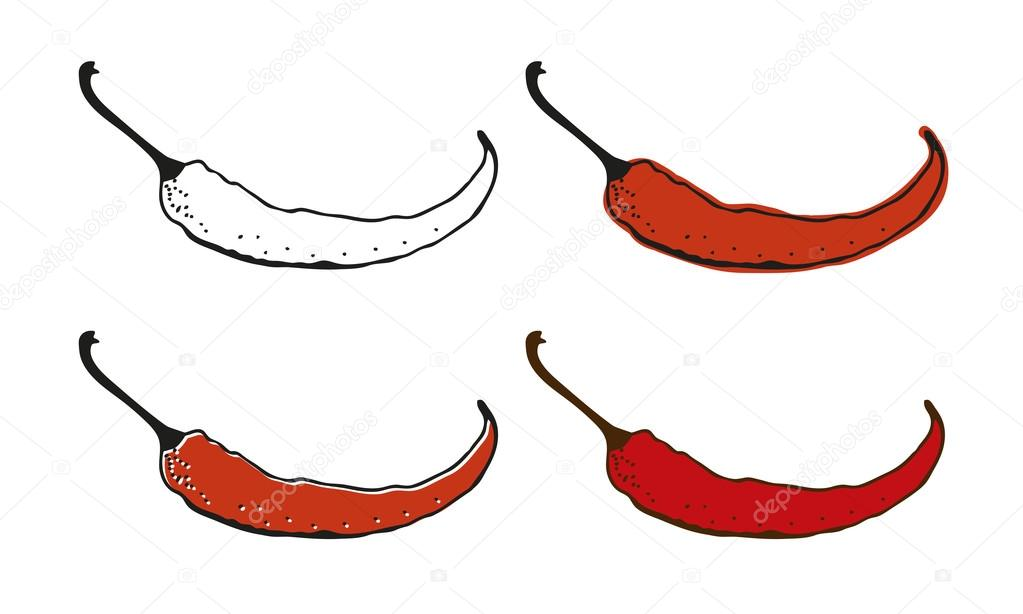 1023x614 Chili Pepper Drawing Stock Vector Fandorina