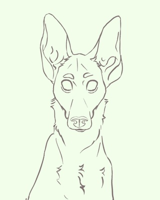 320x400 Hound Drawings On Paigeeworld. Pictures Of Hound