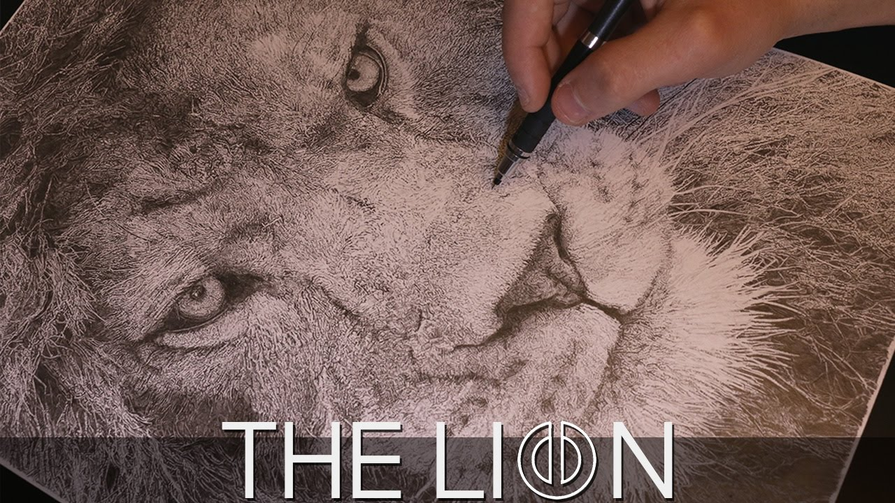 1280x720 Lion Drawing Time Lapse