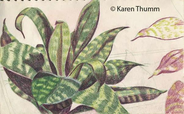 603x374 Drawing On Life The Art Of Karen Baker Thumm Houseplant