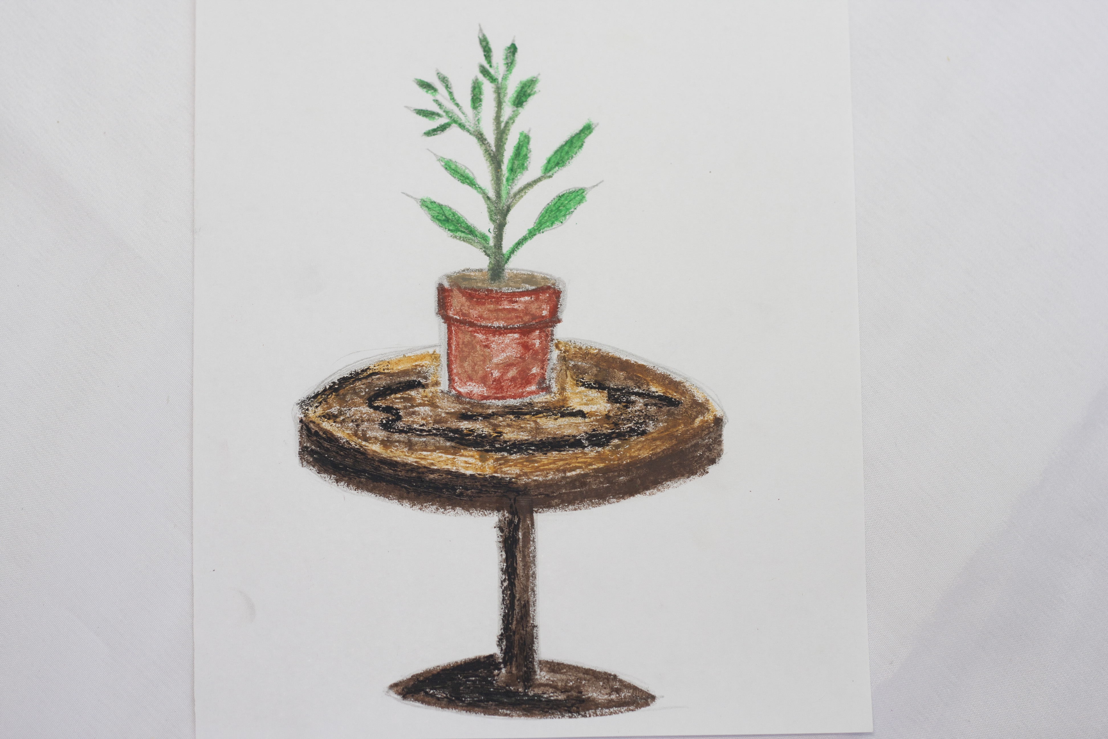 3888x2592 How To Draw A Potted Plant 8 Steps (With Pictures)