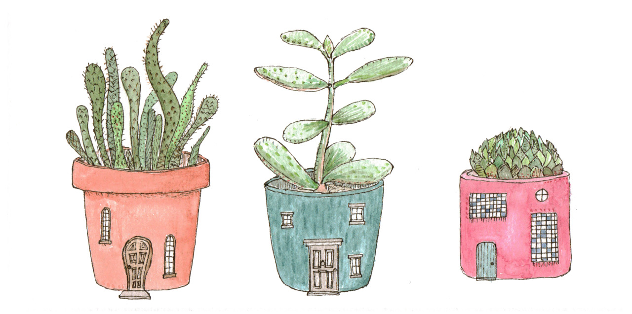 1280x637 Pin By Carla Queiroz On S T U F F Plants, House Art