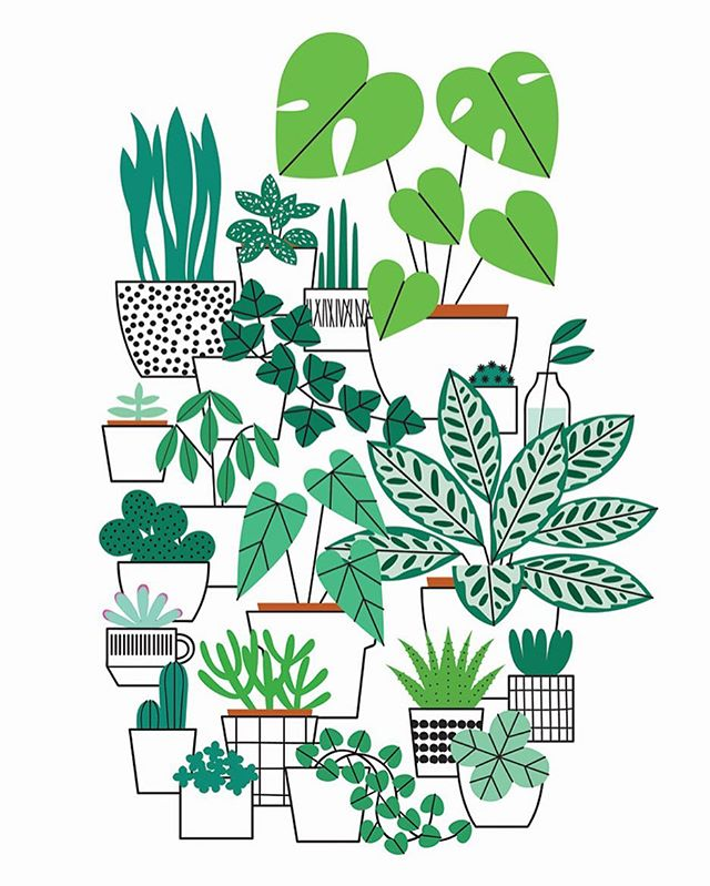 640x799 Pin By Laura On Illustration Cacti, Easy Doodles