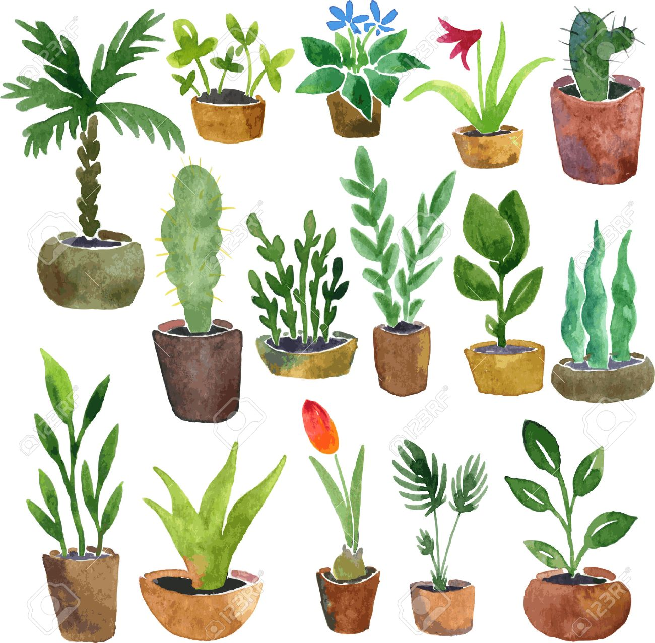 1300x1277 Watercolor Drawing Home Plants, Hand Drawn Vector Illustration