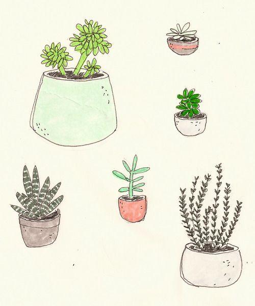 500x601 Plants Drawing Tumblr
