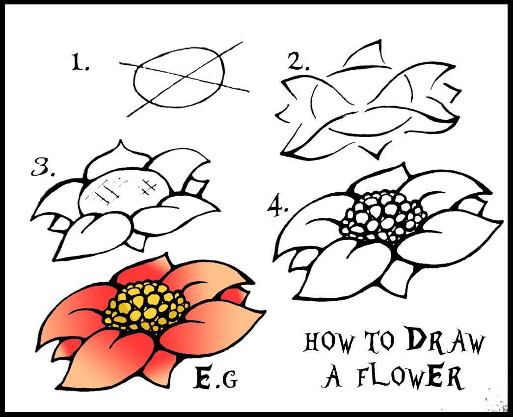 1045x850 Easy Flower Drawings Step By Step Rose Flower Drawing Step Step