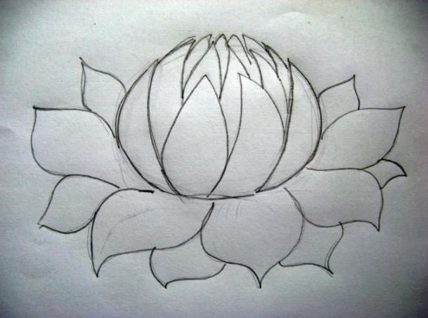 609x453 How To Draw A Flower