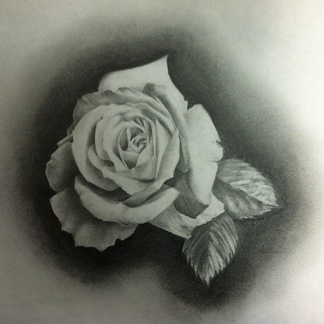 640x640 Ashleymcnamaratattoo Drawings