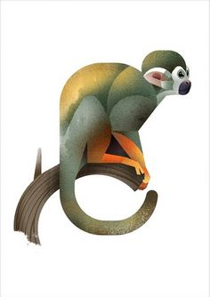 236x334 Collage Howler Monkey Illustration By Wildlife Illustrator