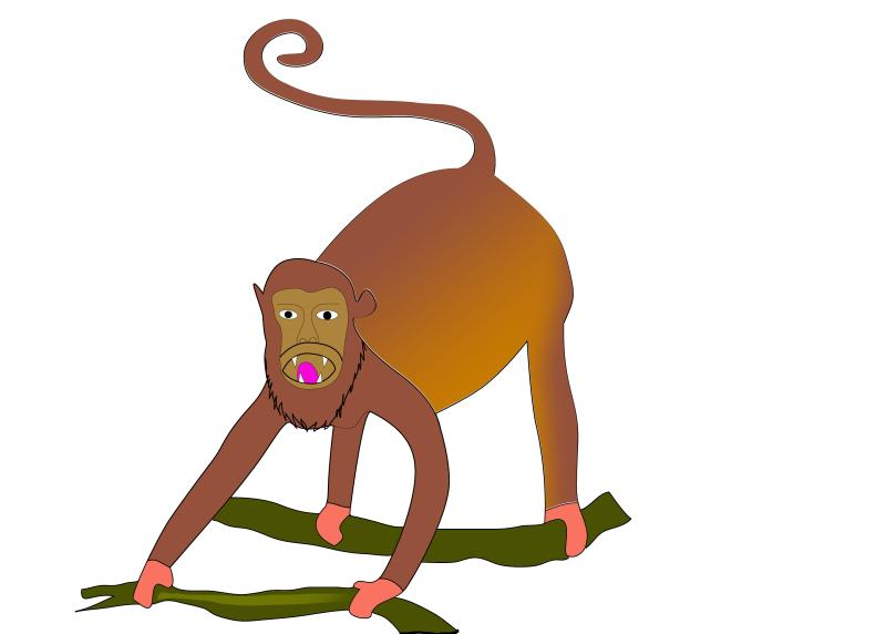 800x572 Howler Monkey Clipart