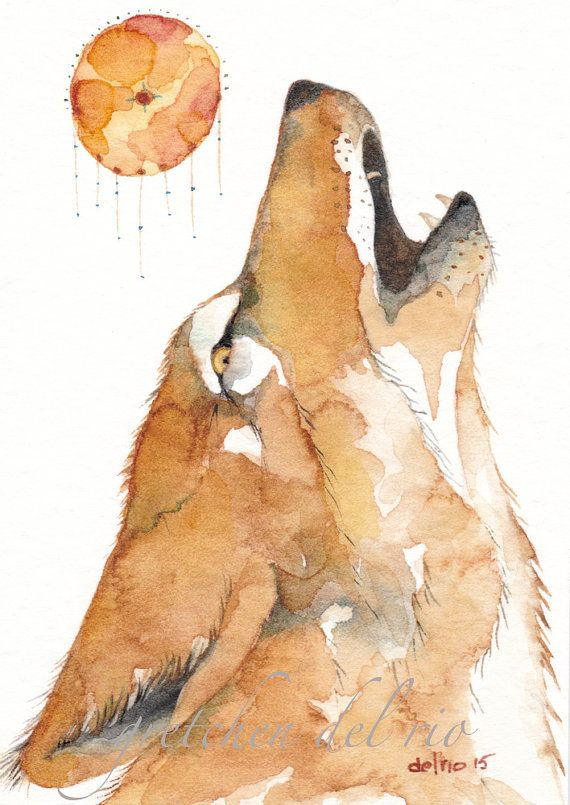 570x805 Coyote Howling Aceo Watercolor Original