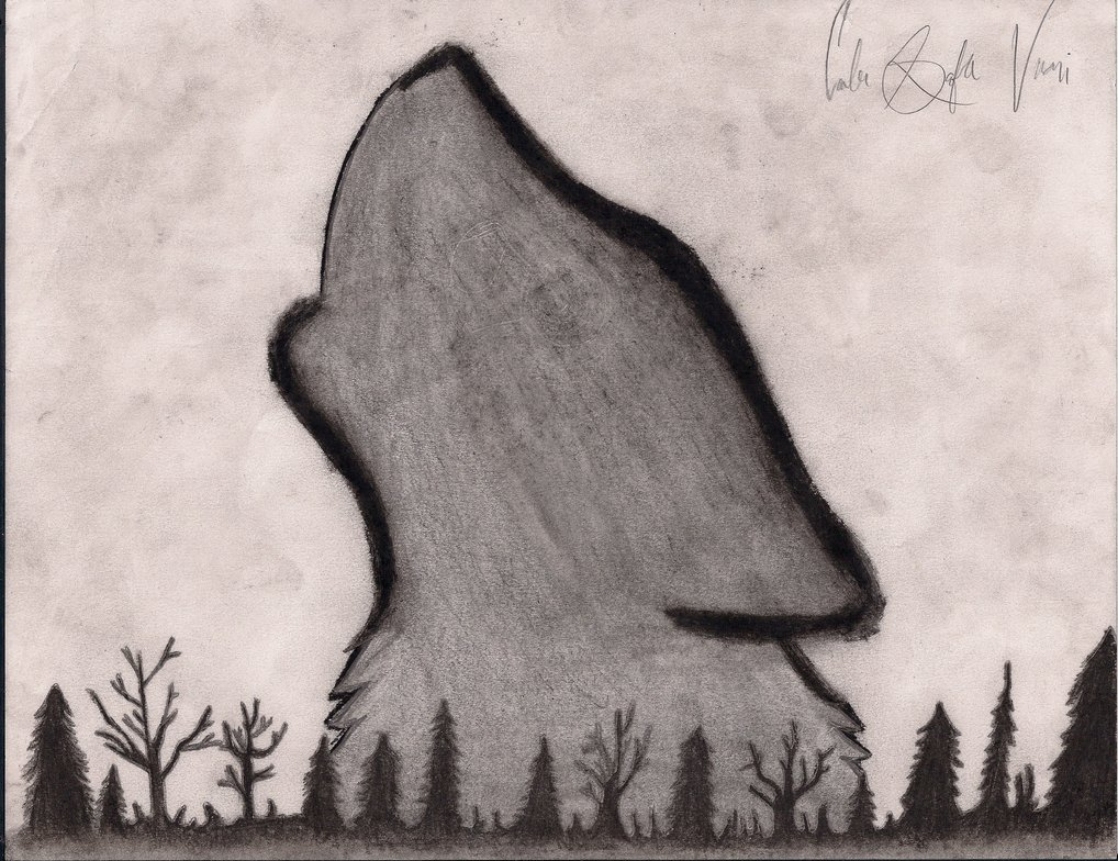 1018x784 Howling Wolf Drawing By Cheshire Kitteh
