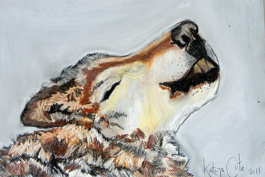 900x602 Howling Wolf Drawing By Katina Cote