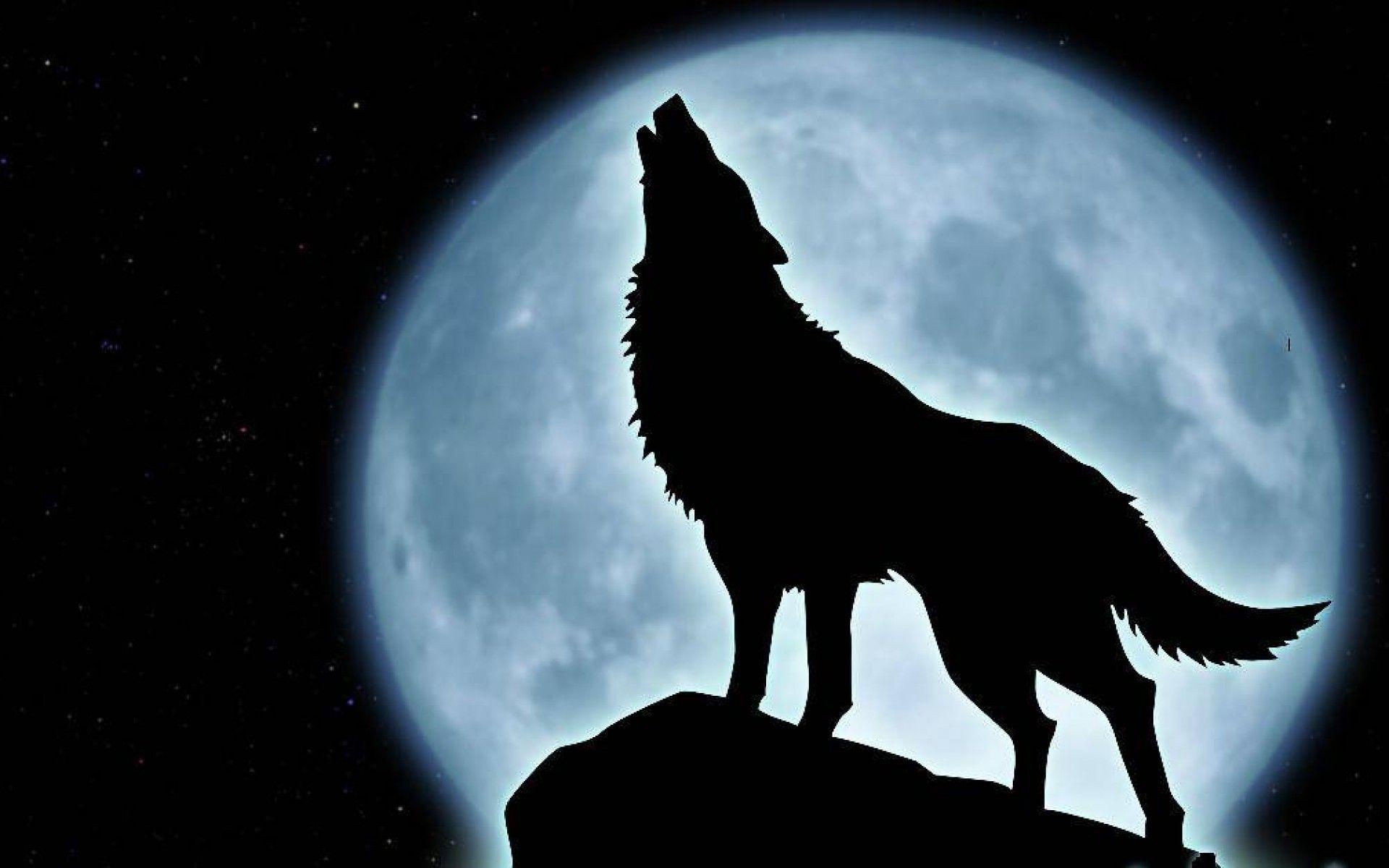 1920x1200 Howling Wolf Wallpaper