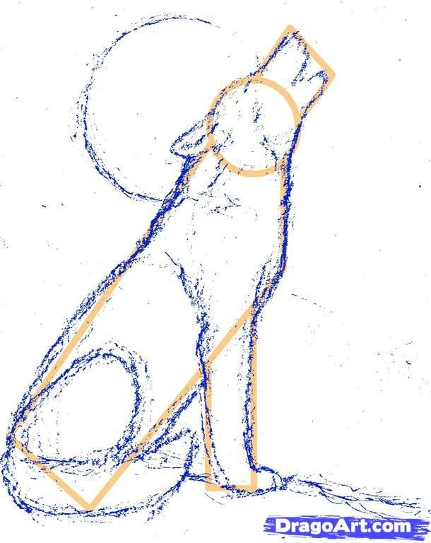 610x768 Step 7. How To Draw A Howling Wolf