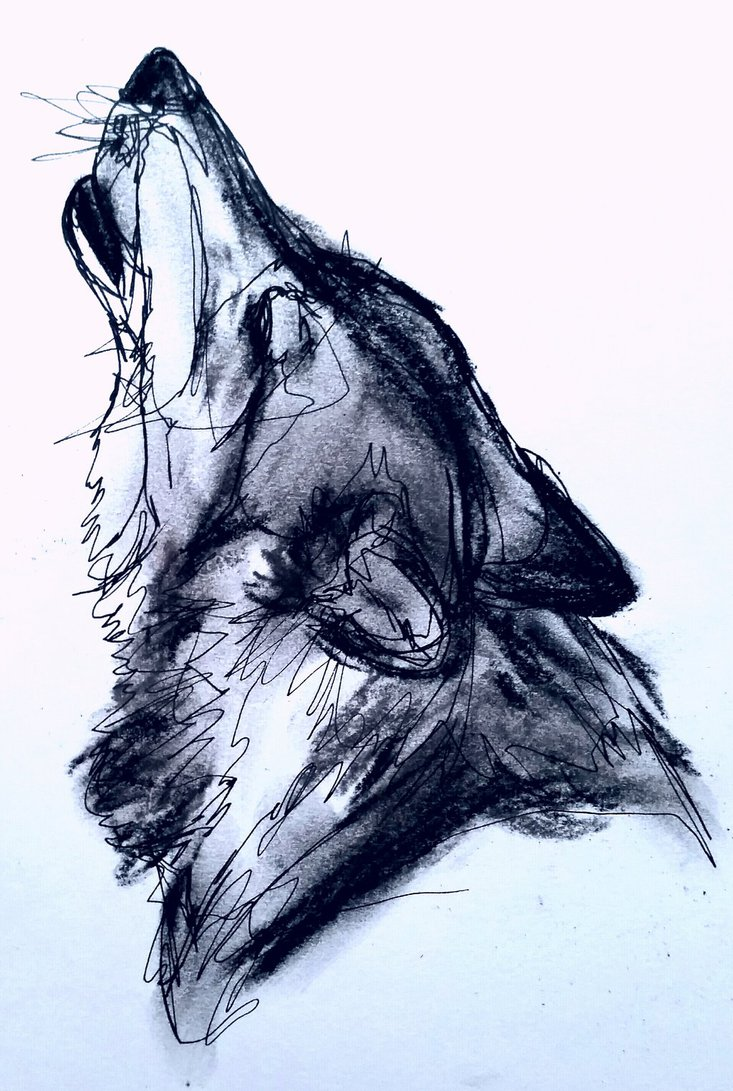 how to draw a wolf head howling step by step