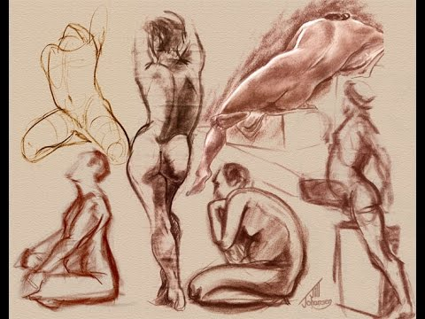 480x360 How To Draw Human Anatomy