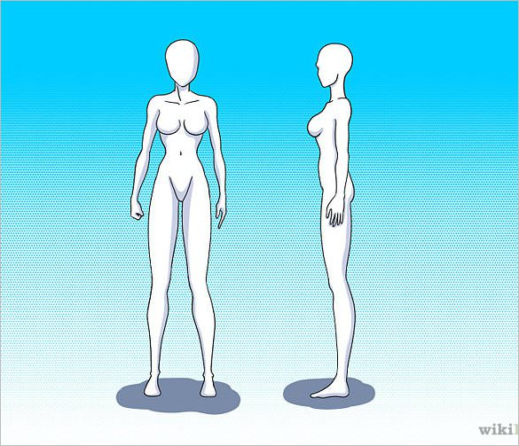 585x503 Body Outline Template Free Sample, Example, Format Download