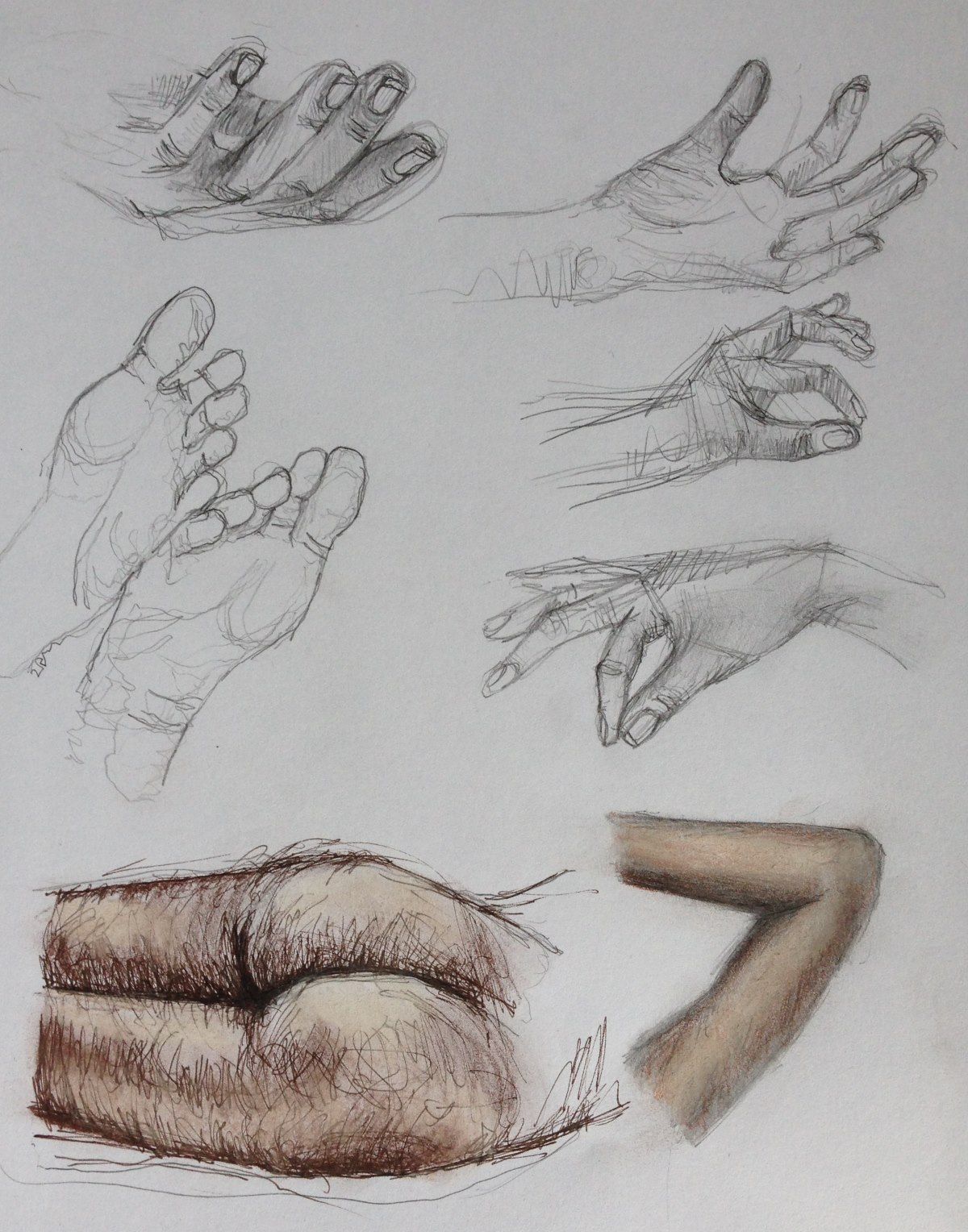1200x1528 Part 4 Project 4 Structure Of Human Body Drawing 1