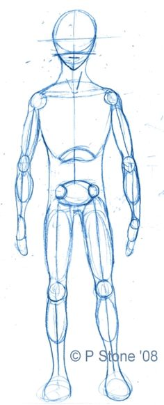 236x581 Step By Step Worksheet How To Draw The Human Body