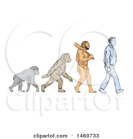 450x470 Clipart Of A Line Of Human Evolution In Sketched Drawing Style